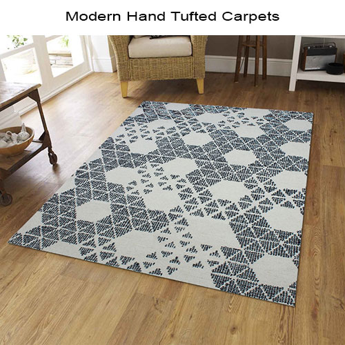 Modern Hand Tufted Carpets CPT 590491